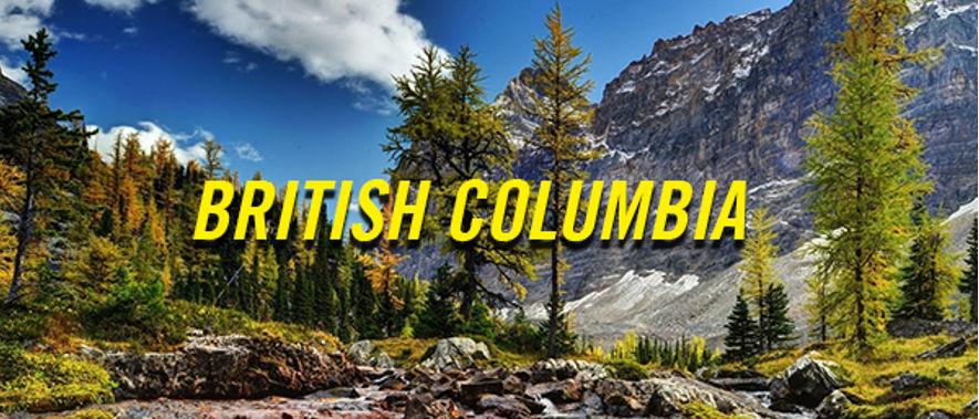 So Sanh 2 Chuong Trinh Dinh Cu Canada Dien Doanh Nhan Tinh Bang British Columbia Bc
